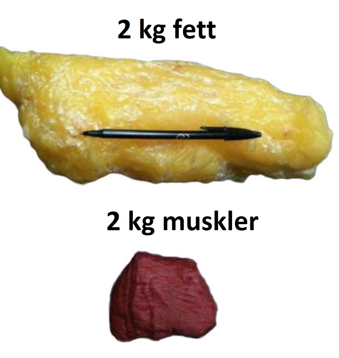 Sant att muskler väger mer än fett