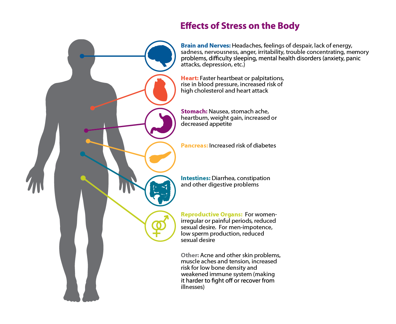 vad händer med kroppen vid stress
