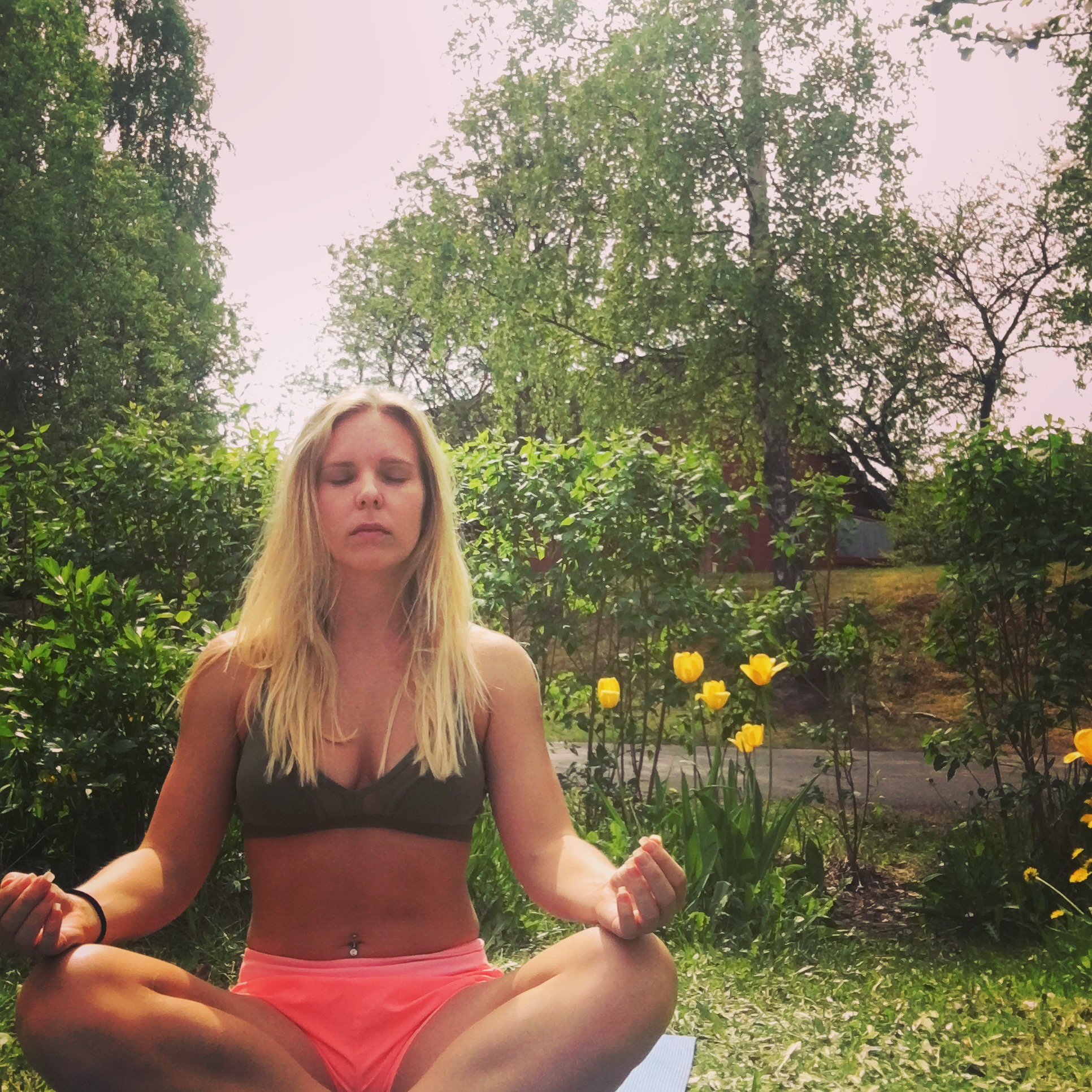 Meditation acceptans