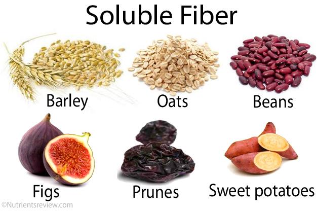 vad innehåller fibrer
