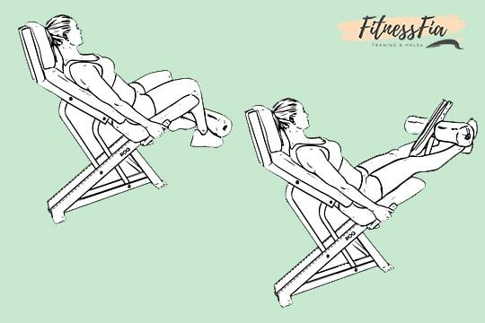 leg extensions svenska benlyft träna ben