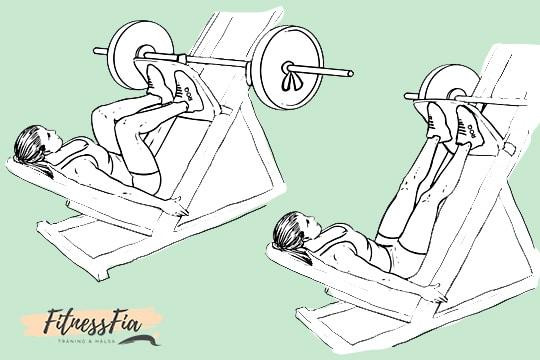 legpress på svenska benpress gymmet övningar ben