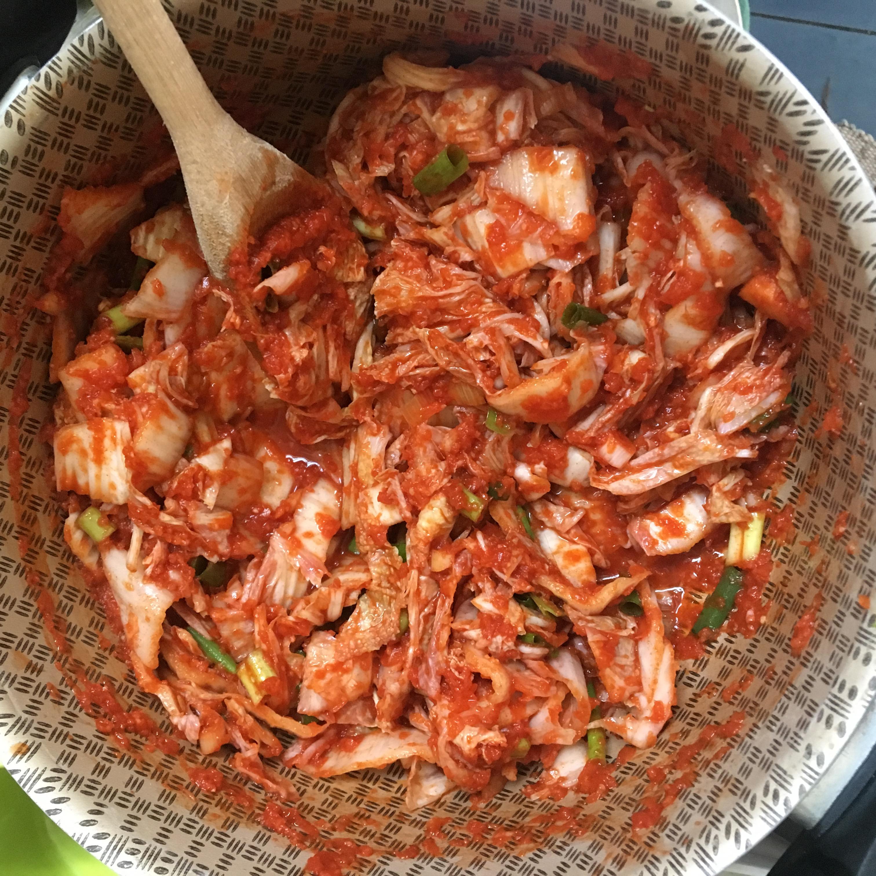 Göra egen kimchi recept ingredisenser