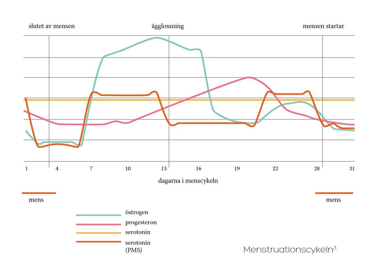 Hormonell obalans, mencykel hormoner under menscykeln