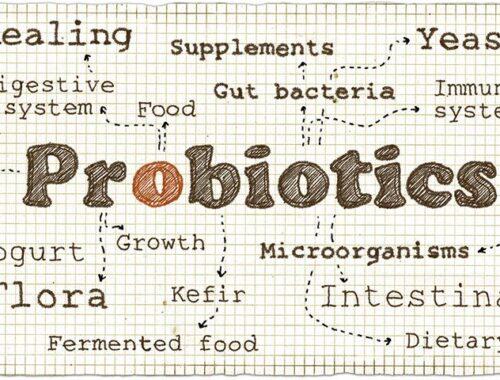 probiotika receptbok förklaringar