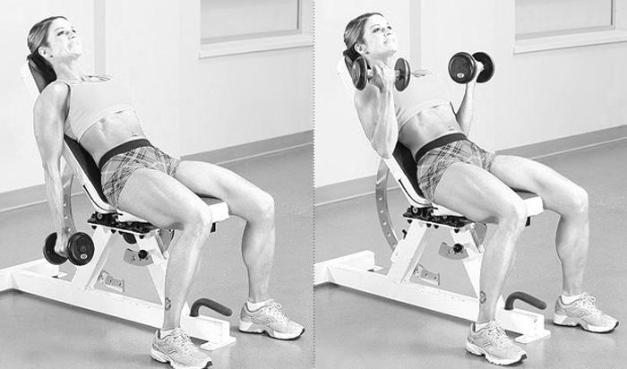 sittande biceps curl bänk