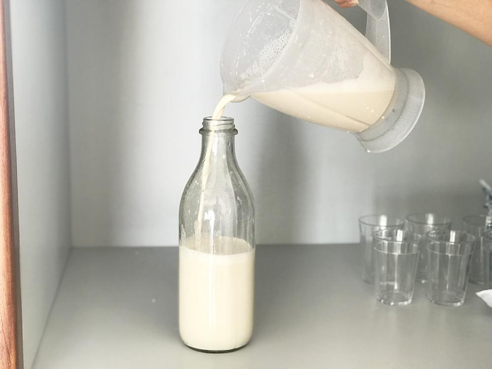 Cashewmjölk recept nötmjölk göra egen hemma