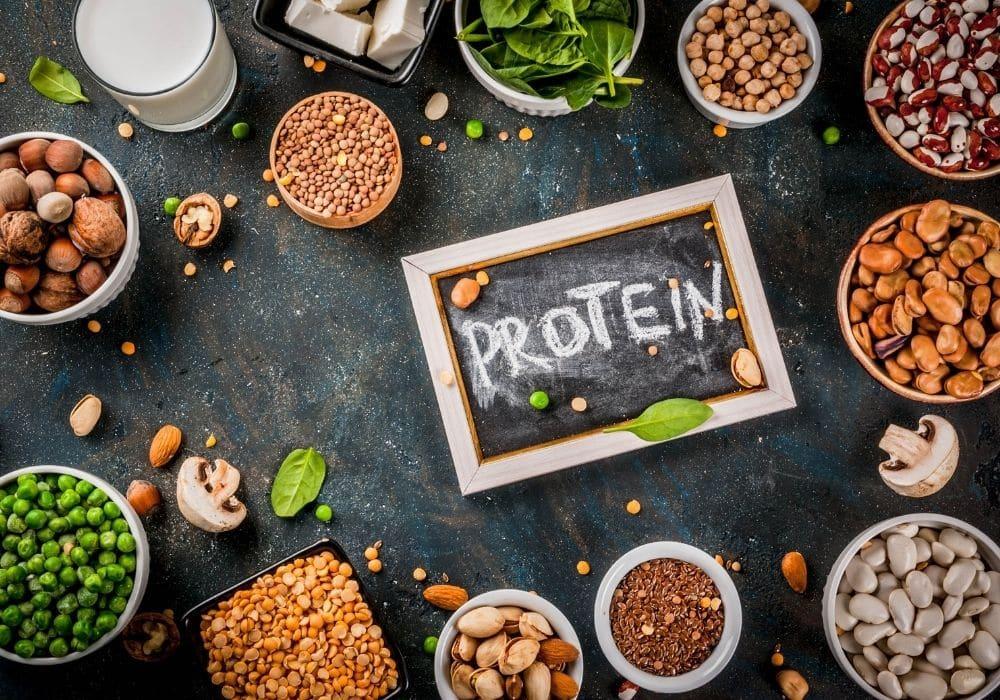 Bästa vegetariskt protein procent