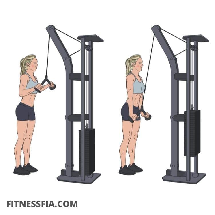 Pushdowns triceps övning gymmet med kabel maskin