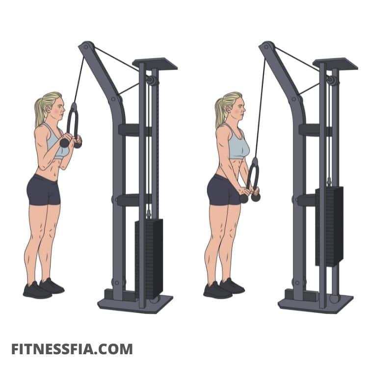 Triceps övning rep gymmet träna triceps på gymmet