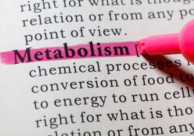 Metabolism periodisk fasta viktnedgång keto lchf