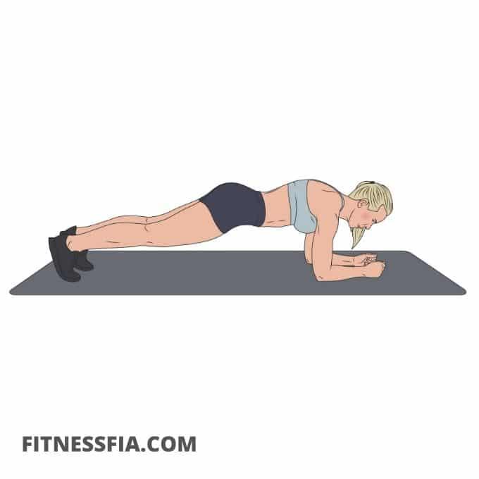 Plankan hållning